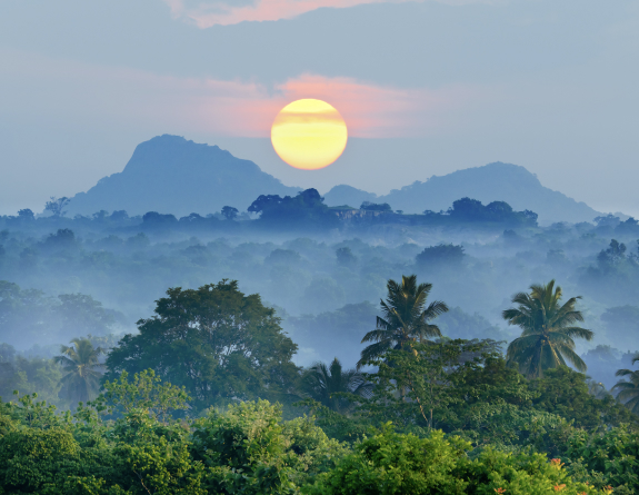 Visum voor Sri Lanka aanvragen